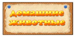 Презентация домашние любимцы ч 2 куры